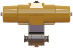 "Model 9001 2"" Trunnion Ball Valve"